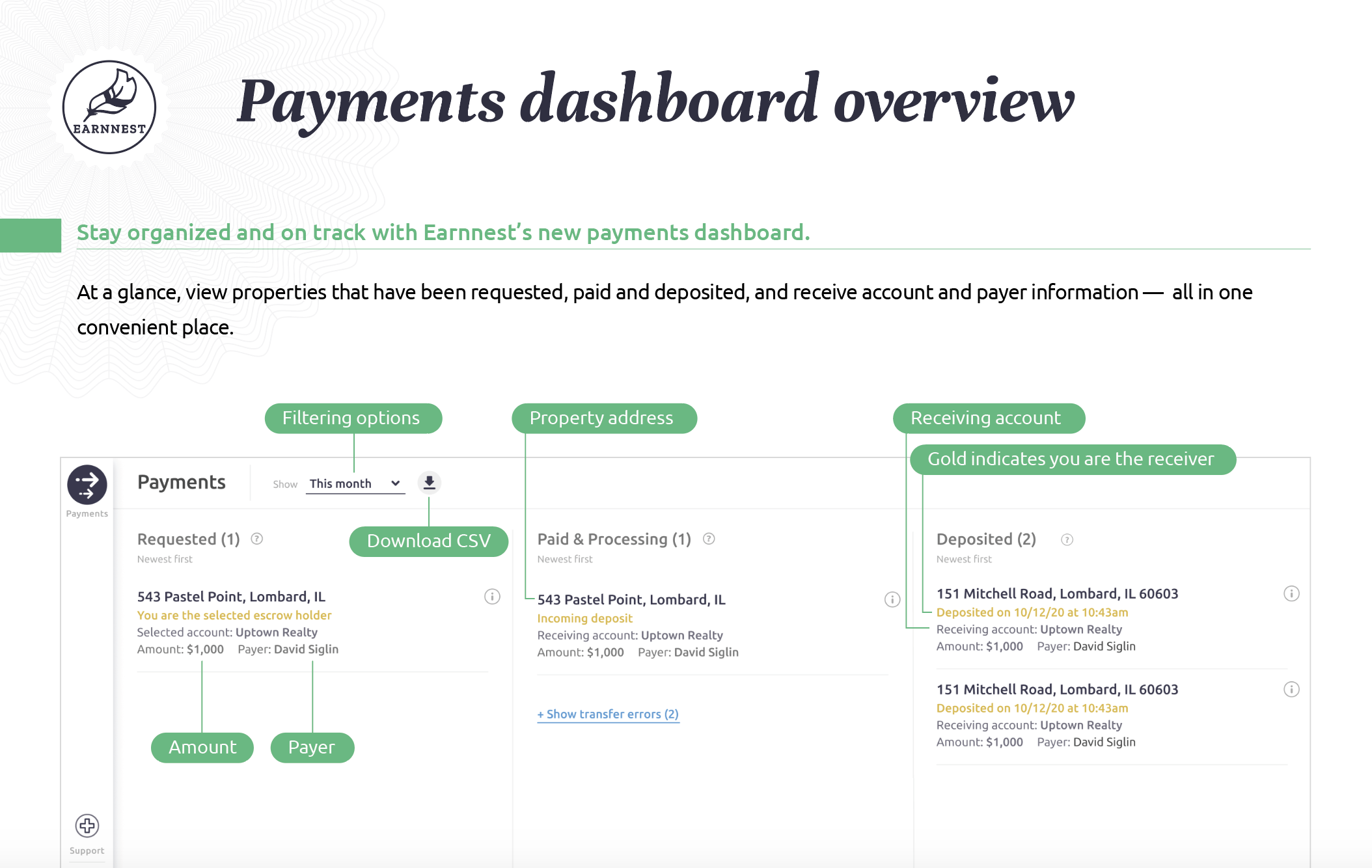 payments-dashboard__overview-june.png